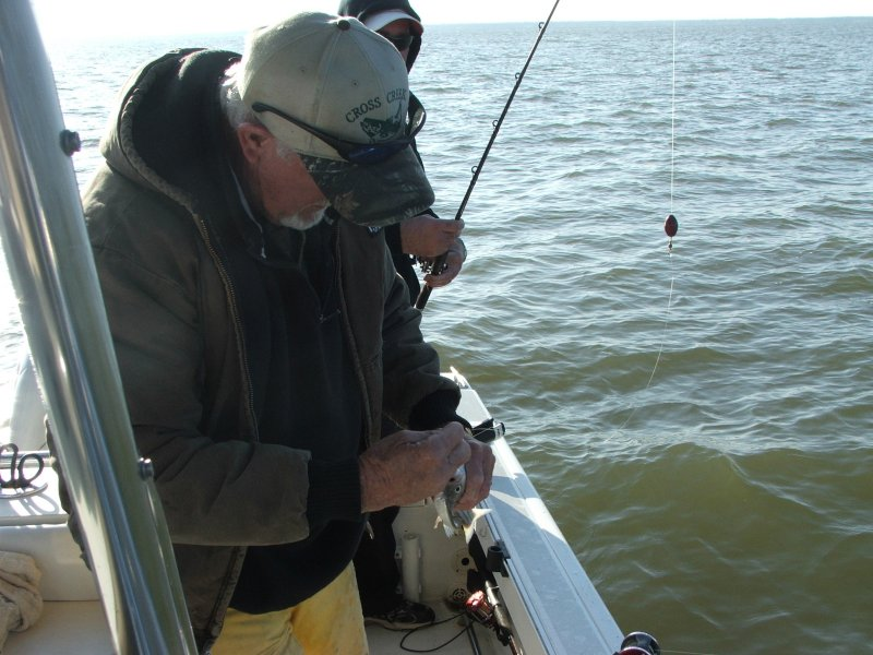Cross creek striper guide service may 2008 fishing for Fishing guides on lake texoma