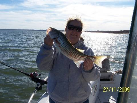 Cross creek striper guide service november 2009 fishing for Lake texoma fishing report