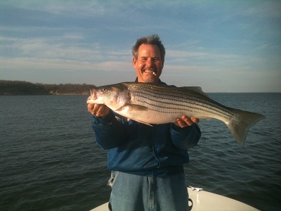 Lake texoma striper fishing photo for Striper fish pictures